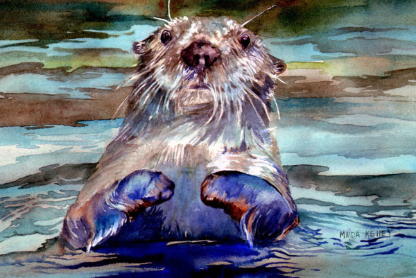 Alaskan Watercolors [Curious Otter]