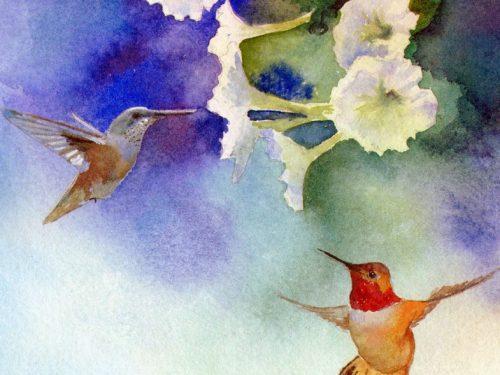 HUMMINGBIRDS ON PETUNIAS