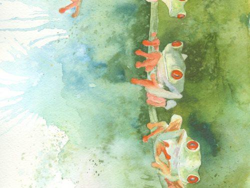 windblown frogs